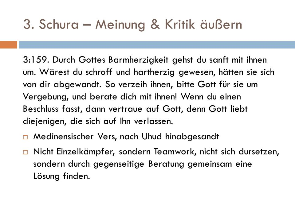 3. Schura – Meinung & Kritik äußern