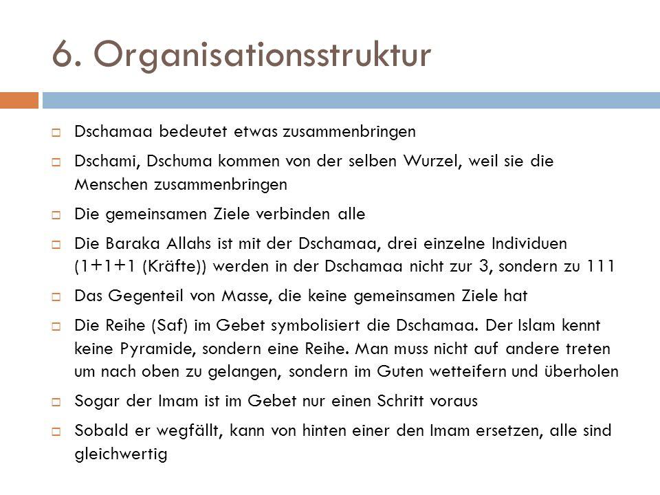 6. Organisationsstruktur