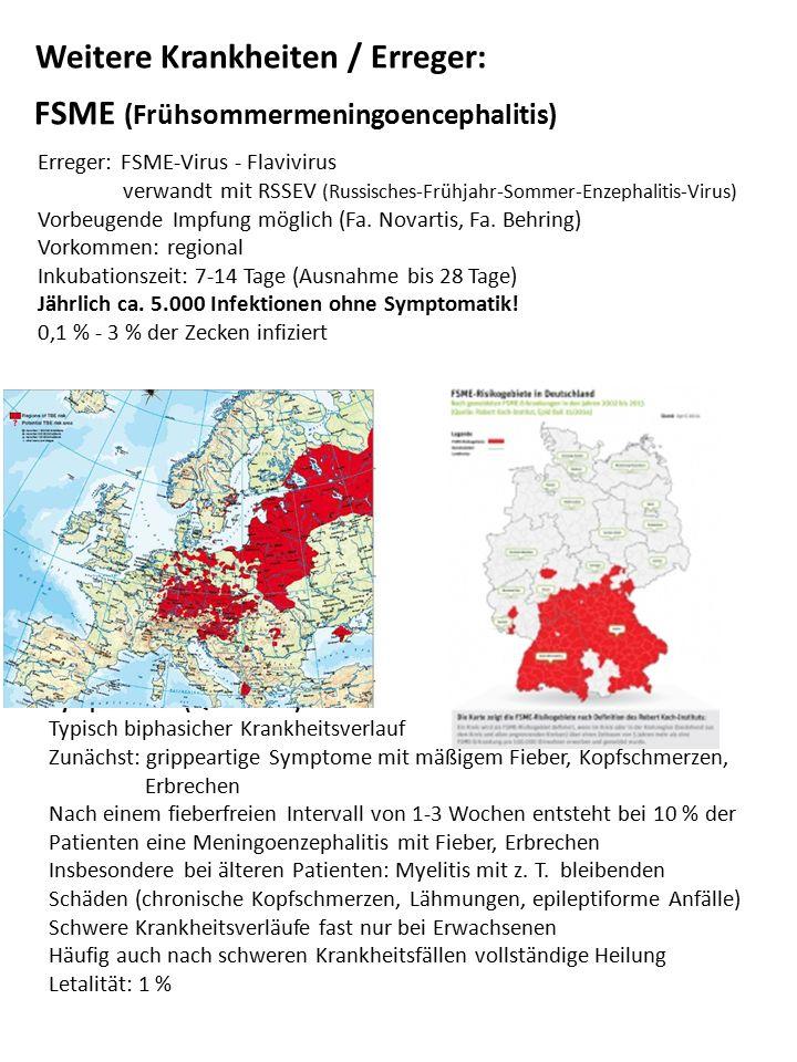 FSME (Frühsommermeningoencephalitis)