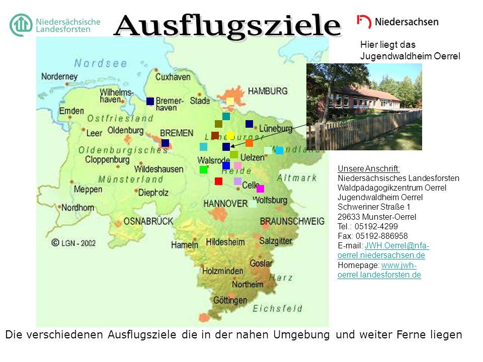 Ausflugsziele Hier liegt das Jugendwaldheim Oerrel. Unsere Anschrift: Niedersächsisches Landesforsten.