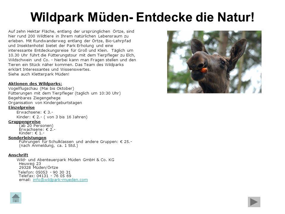 Wildpark Müden- Entdecke die Natur!