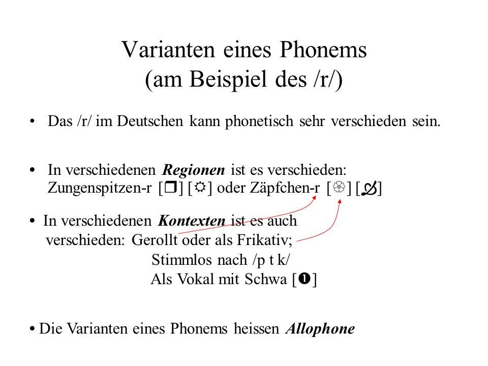 Varianten eines Phonems (am Beispiel des /r/)