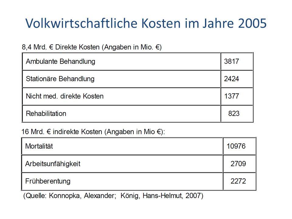 Volkwirtschaftliche Kosten im Jahre 2005