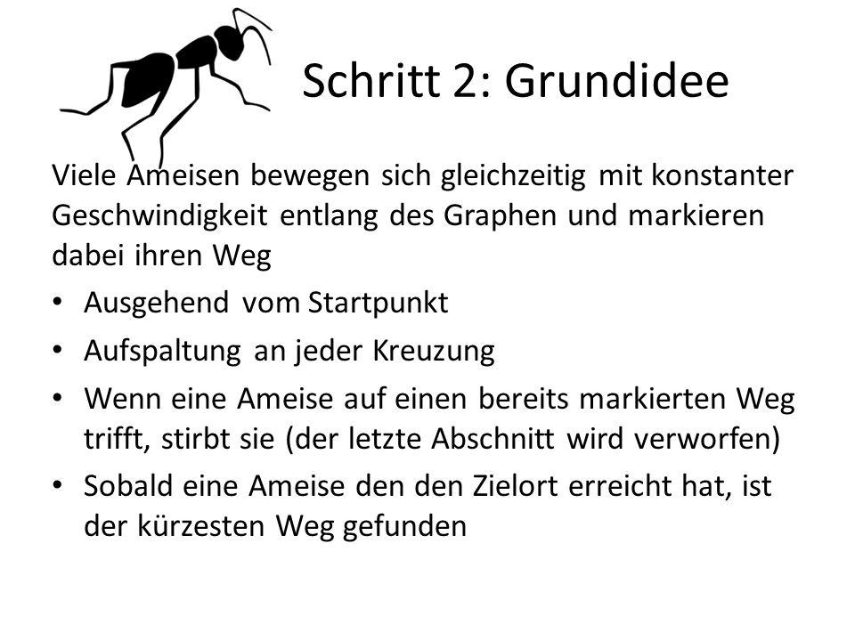 Schritt 2: Grundidee Viele Ameisen bewegen sich gleichzeitig mit konstanter Geschwindigkeit entlang des Graphen und markieren dabei ihren Weg.