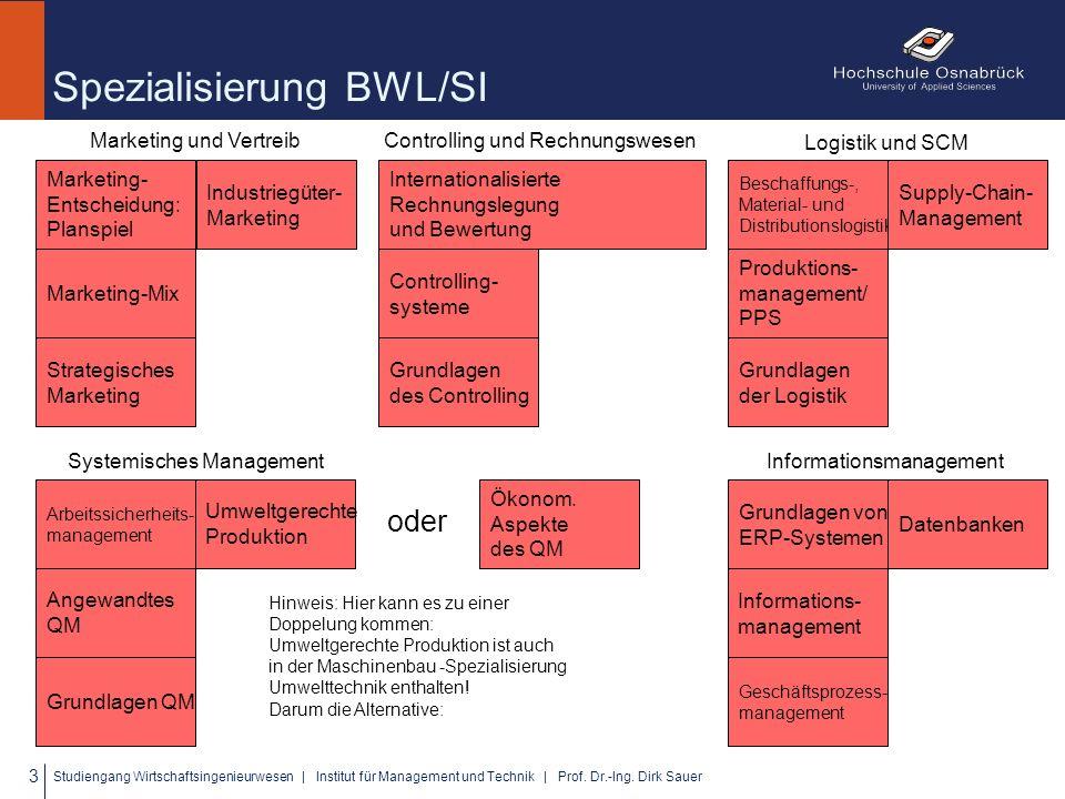 Spezialisierung BWL/SI