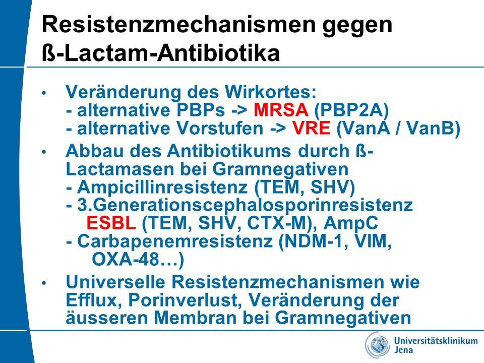 Resistenzmechanismen gegen ß-Lactam-Antibiotika