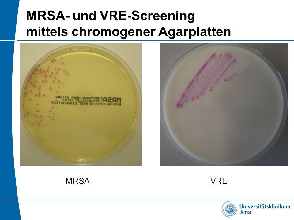 MRSA- und VRE-Screening mittels chromogener Agarplatten