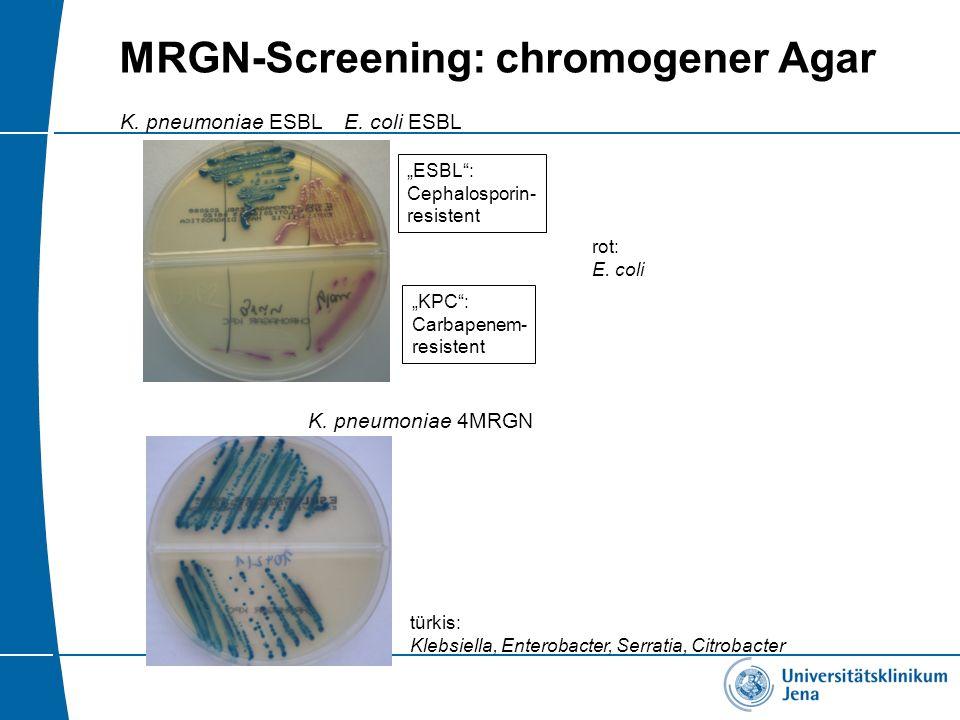 MRGN-Screening: chromogener Agar