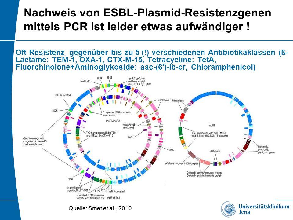 Nachweis von ESBL-Plasmid-Resistenzgenen mittels PCR ist leider etwas aufwändiger !