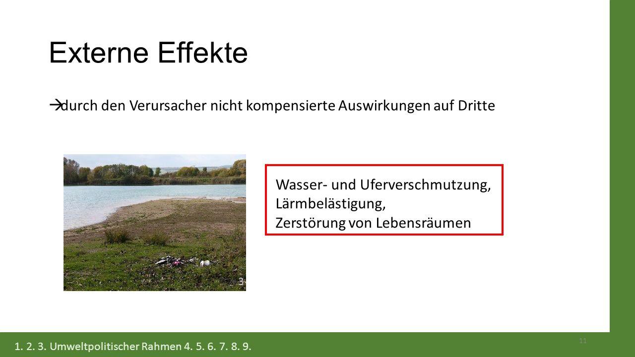 Externe Effekte durch den Verursacher nicht kompensierte Auswirkungen auf Dritte. Wasser- und Uferverschmutzung, Lärmbelästigung,