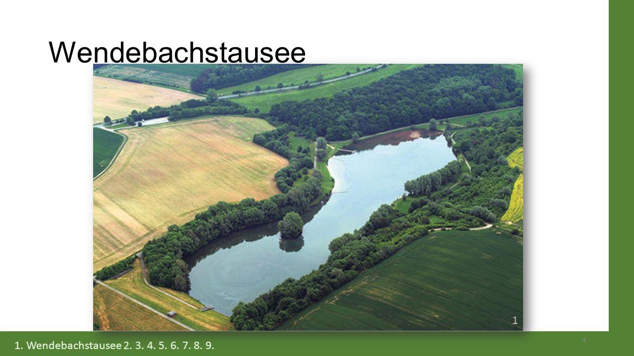 Wendebachstausee 1 1. Wendebachstausee 2. 3. 4. 5. 6. 7. 8. 9.