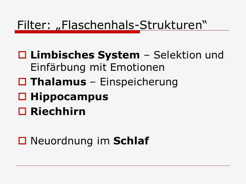 "Filter: ""Flaschenhals-Strukturen"