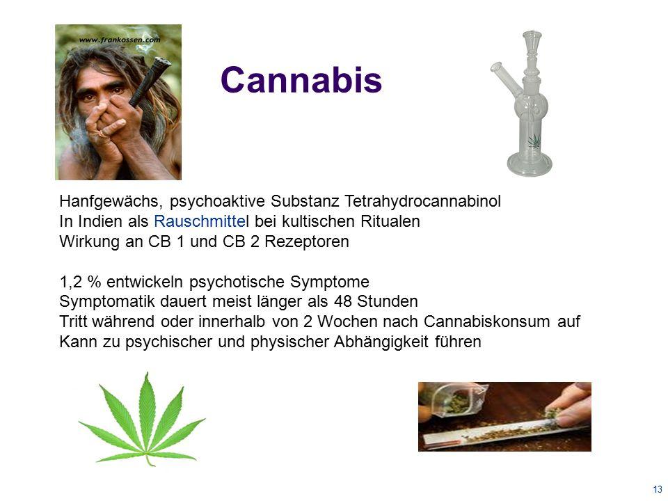 Cannabis Hanfgewächs, psychoaktive Substanz Tetrahydrocannabinol