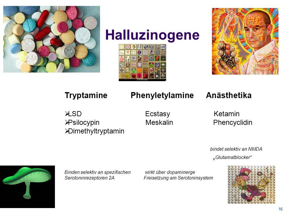 Halluzinogene Tryptamine Phenyletylamine Anästhetika