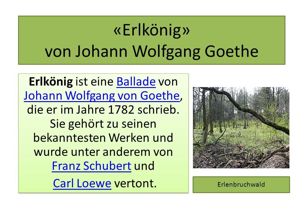 «Erlkönig» von Johann Wolfgang Goethe