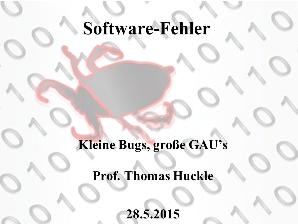 Kleine Bugs, große GAU's Prof. Thomas Huckle 28.5.2015