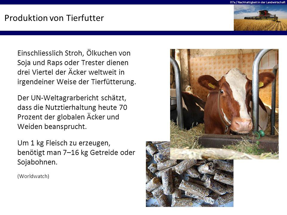 Produktion von Tierfutter
