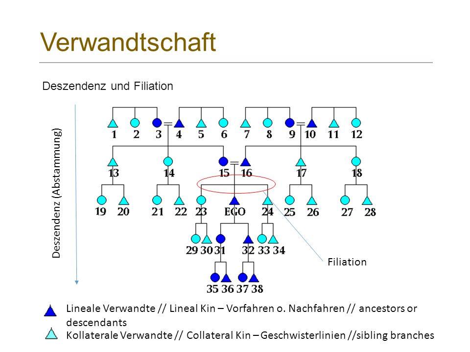 Verwandtschaft . Deszendenz und Filiation Deszendenz (Abstammung)