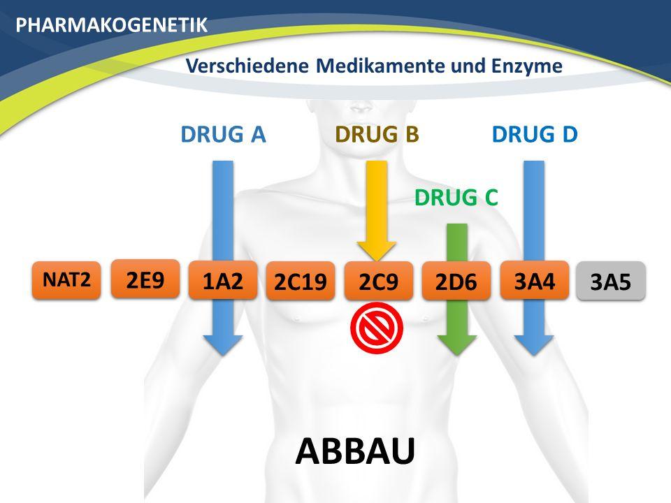 Verschiedene Medikamente und Enzyme
