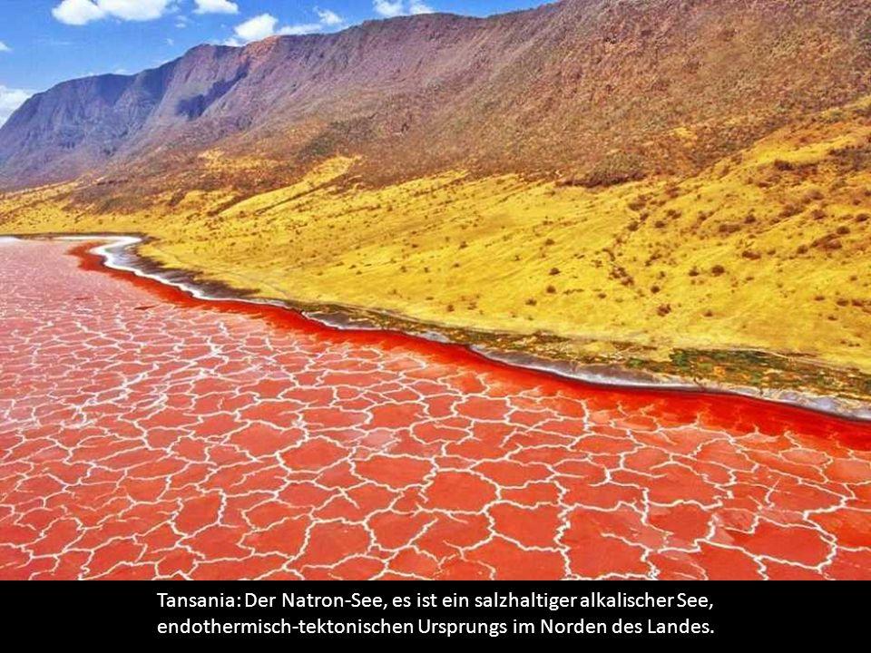 Tansania: Der Natron-See, es ist ein salzhaltiger alkalischer See, endothermisch-tektonischen Ursprungs im Norden des Landes.