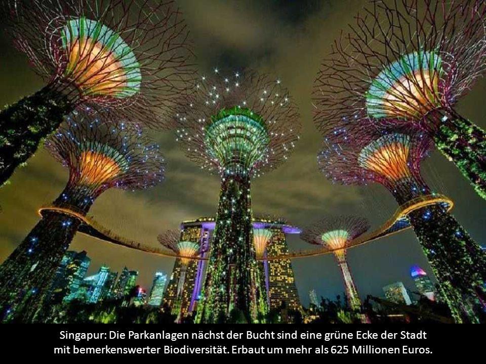 Singapur: Die Parkanlagen nächst der Bucht sind eine grüne Ecke der Stadt mit bemerkenswerter Biodiversität.
