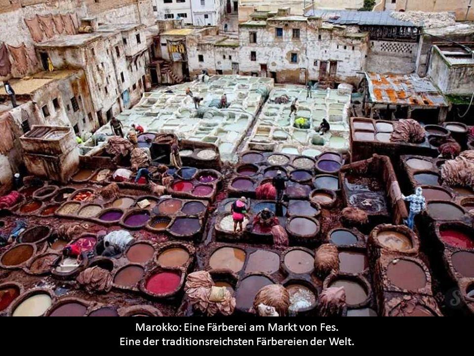 Marokko: Eine Färberei am Markt von Fes