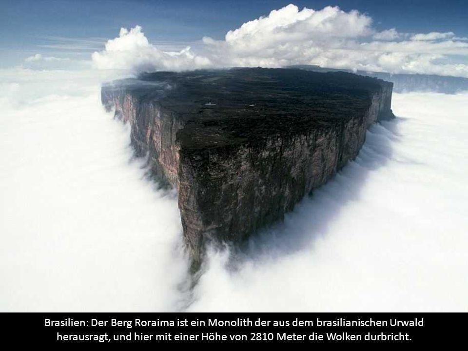Brasilien: Der Berg Roraima ist ein Monolith der aus dem brasilianischen Urwald herausragt, und hier mit einer Höhe von 2810 Meter die Wolken durbricht.