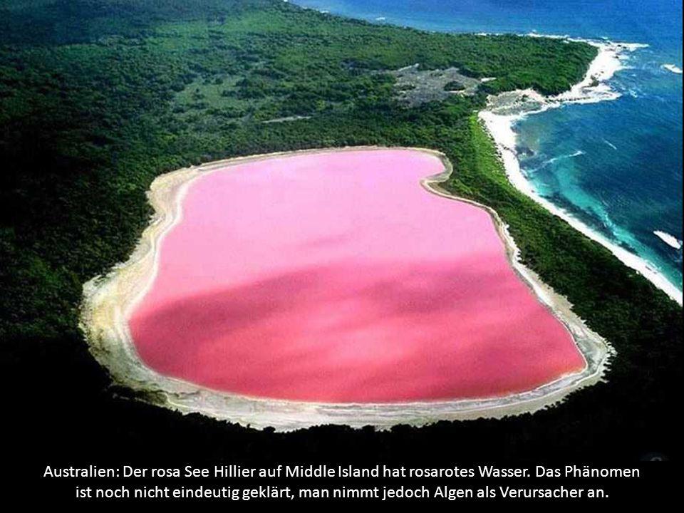 Australien: Der rosa See Hillier auf Middle Island hat rosarotes Wasser.