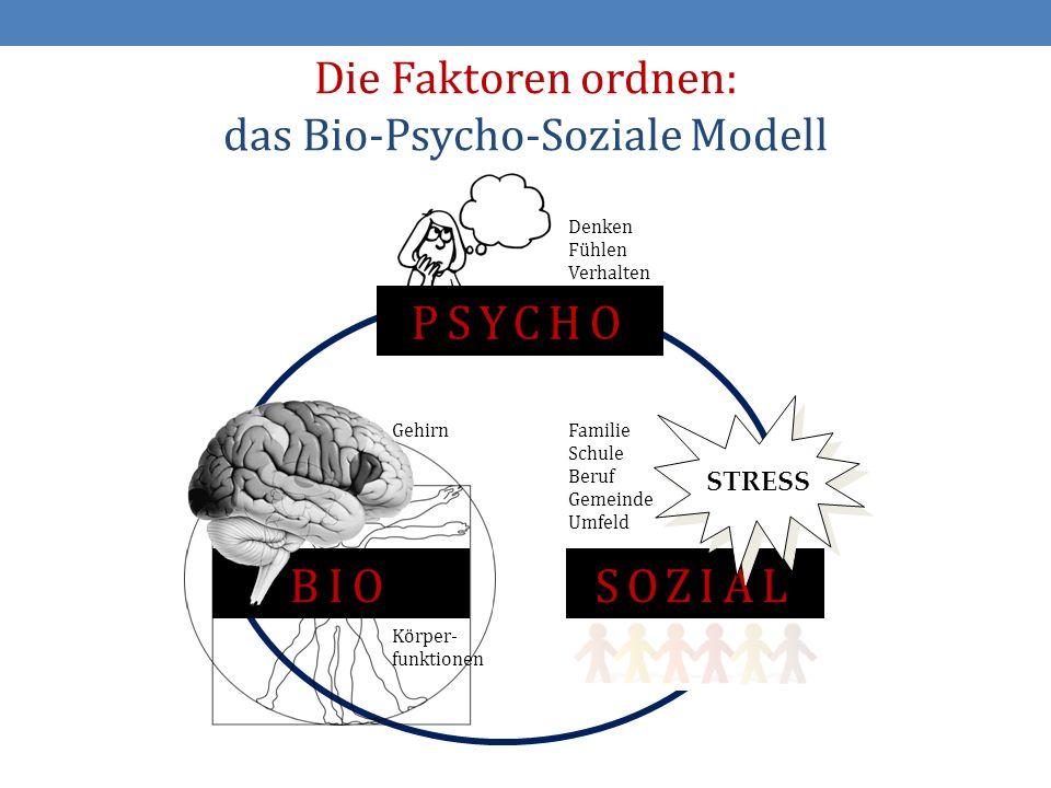 Die Faktoren ordnen: das Bio-Psycho-Soziale Modell