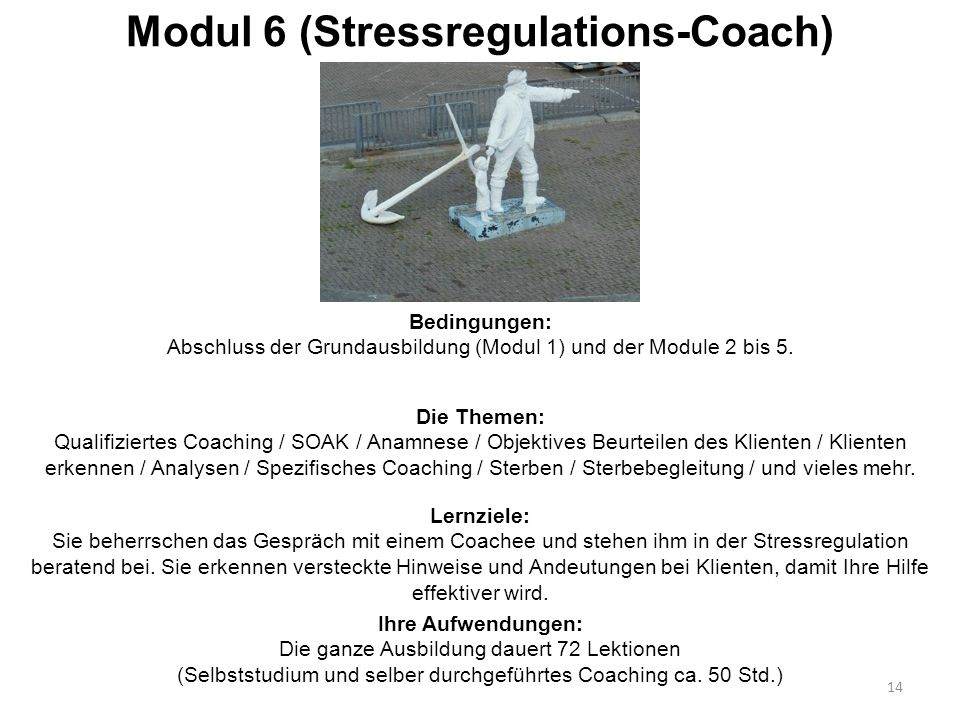 Modul 6 (Stressregulations-Coach)