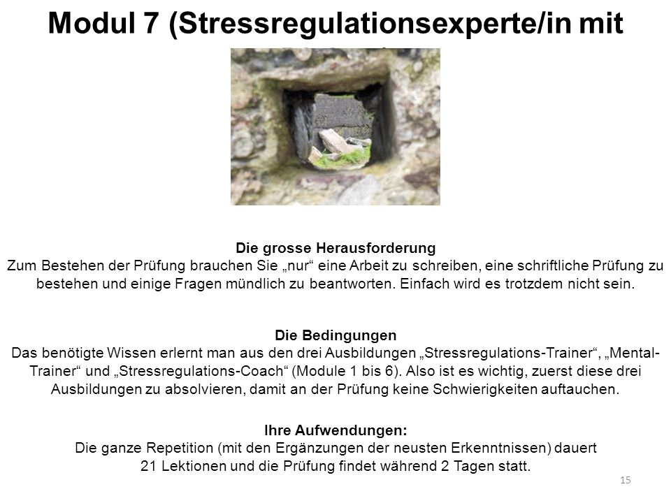 Modul 7 (Stressregulationsexperte/in mit Diplom)