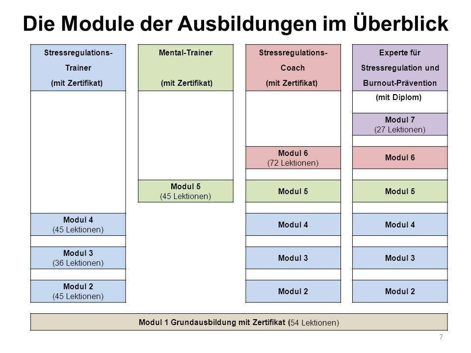 Die Module der Ausbildungen im Überblick