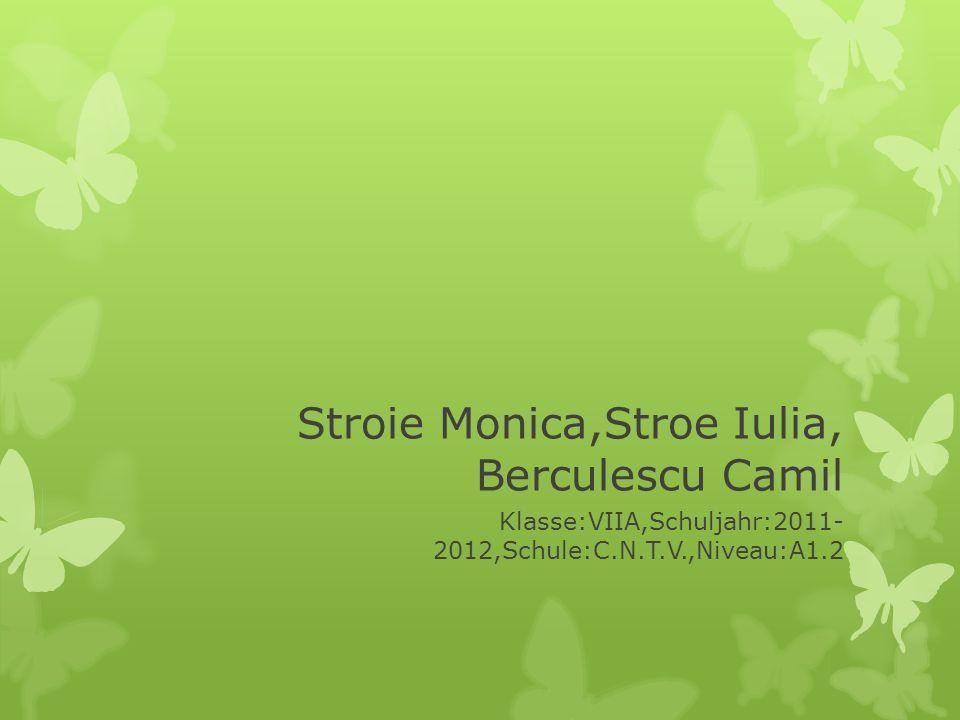 Stroie Monica,Stroe Iulia, Berculescu Camil