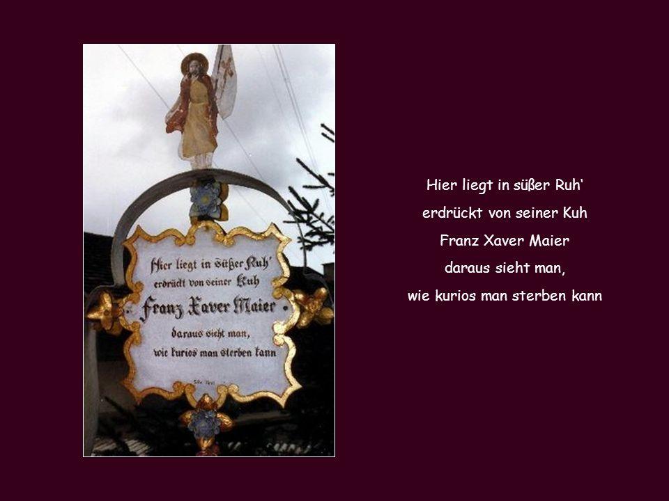 Hier liegt in süßer Ruh' erdrückt von seiner Kuh Franz Xaver Maier