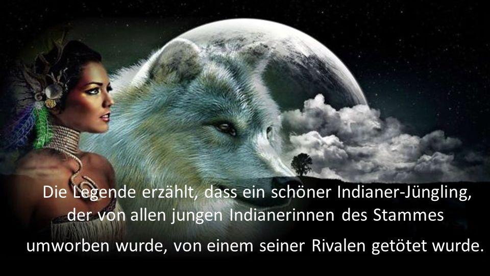 Die Legende erzählt, dass ein schöner Indianer-Jüngling, der von allen jungen Indianerinnen des Stammes umworben wurde, von einem seiner Rivalen getötet wurde.