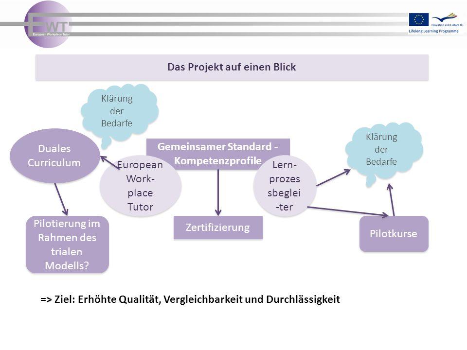 Das Projekt auf einen Blick Gemeinsamer Standard - Kompetenzprofile