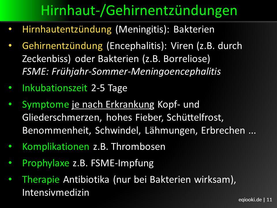 Hirnhaut-/Gehirnentzündungen