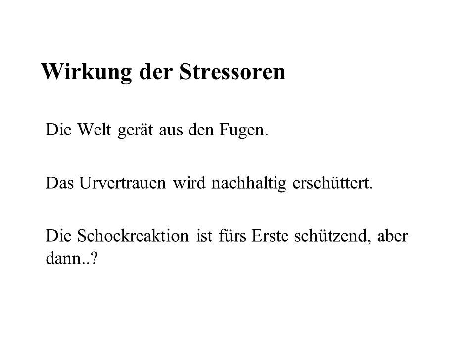 Wirkung der Stressoren