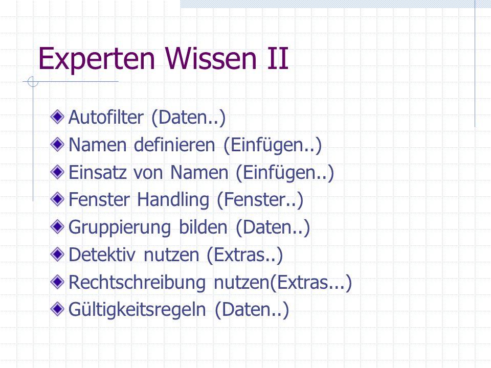Experten Wissen II Autofilter (Daten..) Namen definieren (Einfügen..)