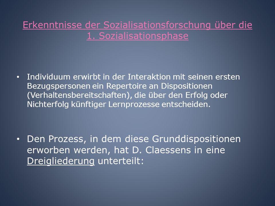 Erkenntnisse der Sozialisationsforschung über die 1