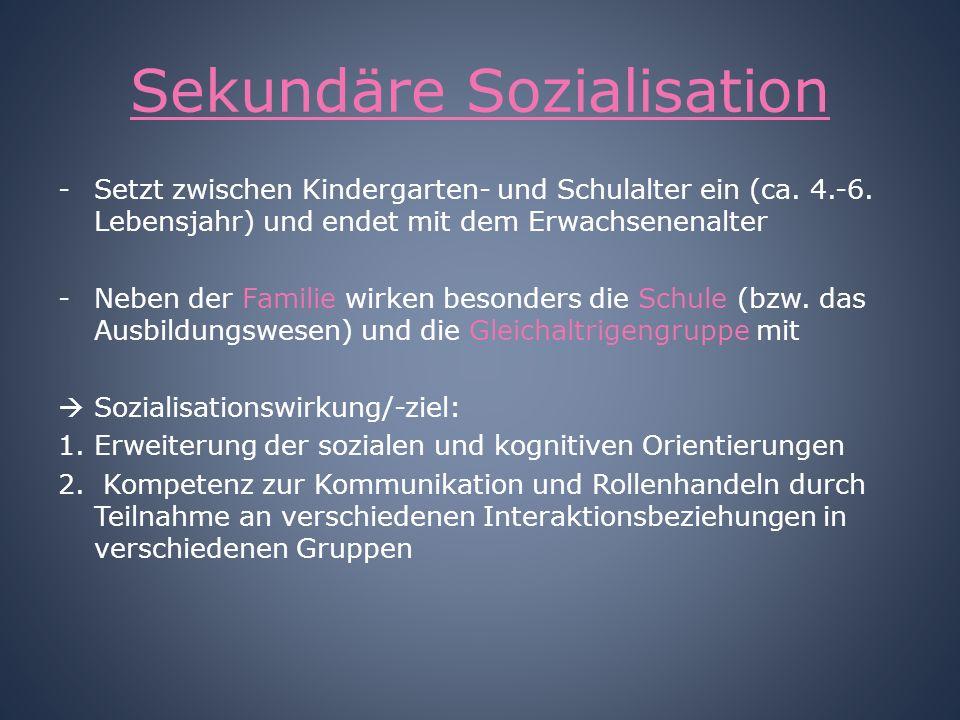 Sekundäre Sozialisation
