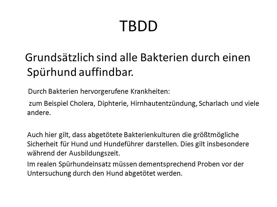 TBDD Grundsätzlich sind alle Bakterien durch einen Spürhund auffindbar. Durch Bakterien hervorgerufene Krankheiten:
