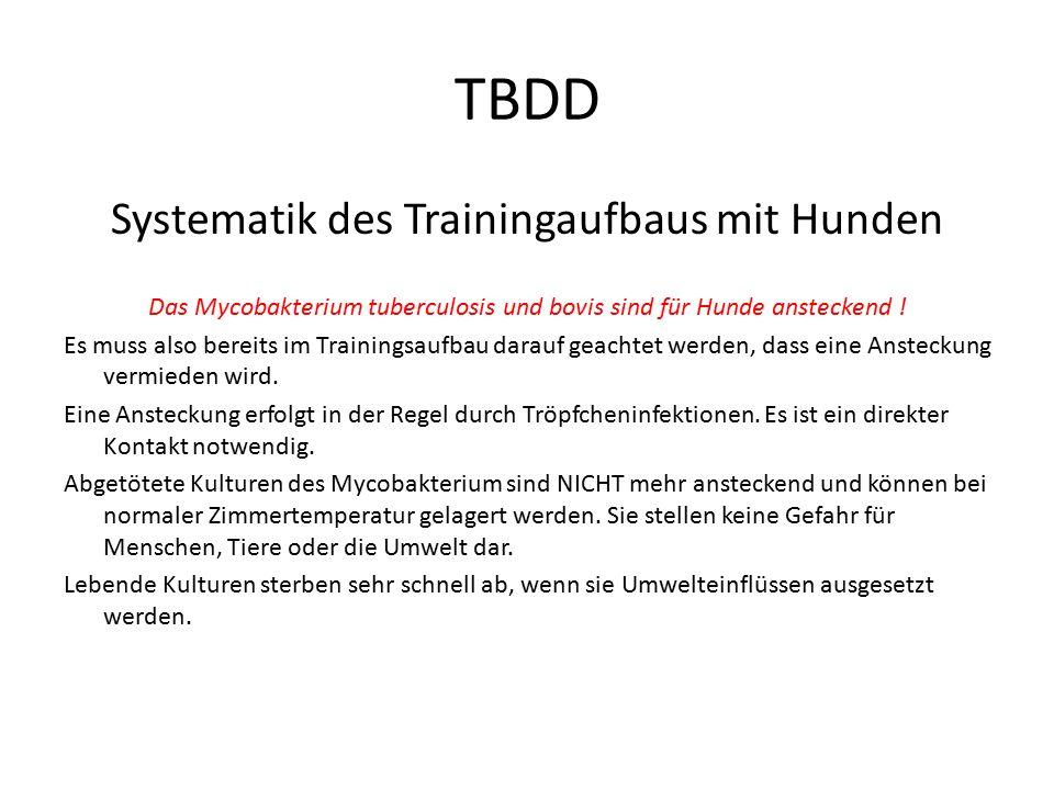 TBDD Systematik des Trainingaufbaus mit Hunden