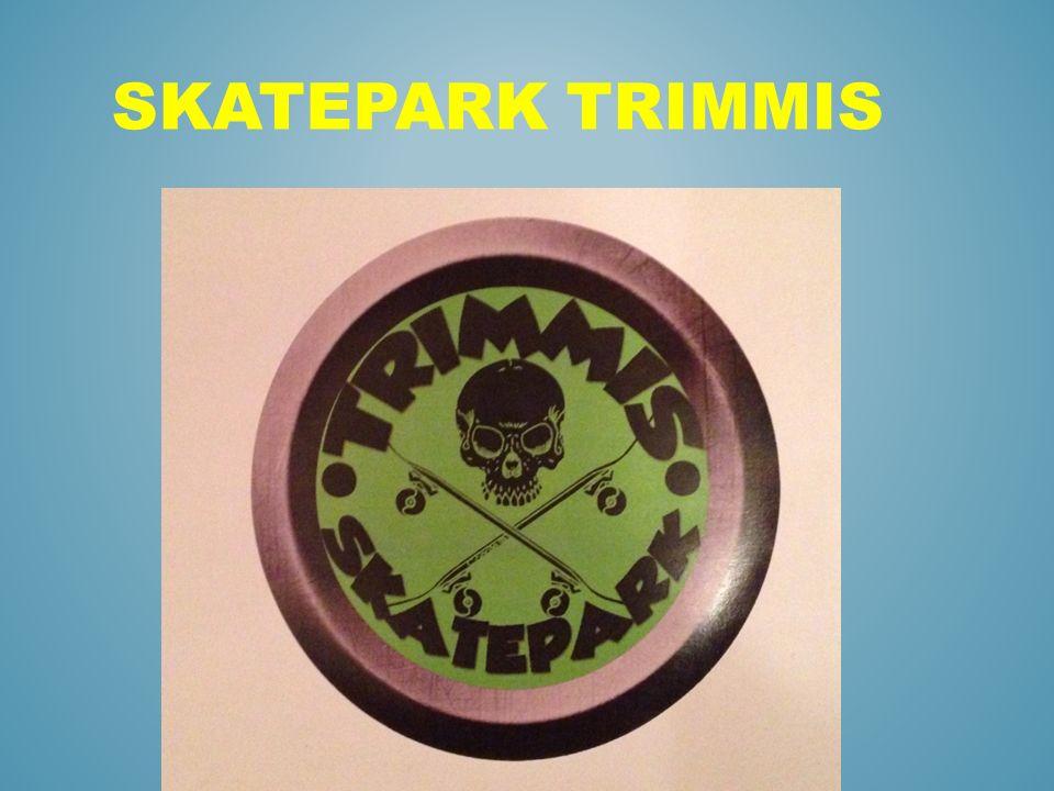 Skatepark Trimmis