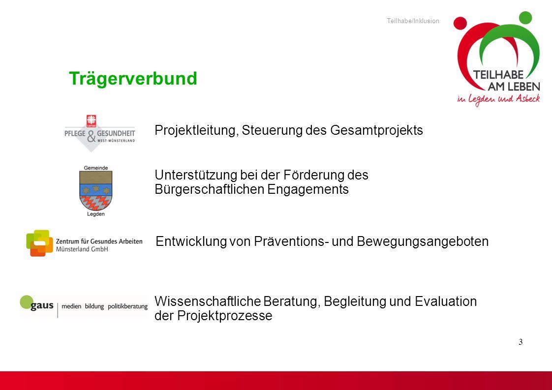 Trägerverbund Projektleitung, Steuerung des Gesamtprojekts