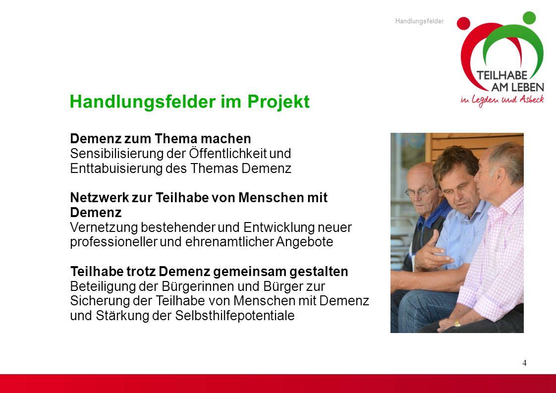 Handlungsfelder im Projekt