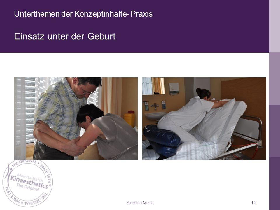 Unterthemen der Konzeptinhalte- Praxis Einsatz unter der Geburt