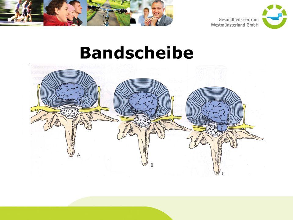 Bandscheibe