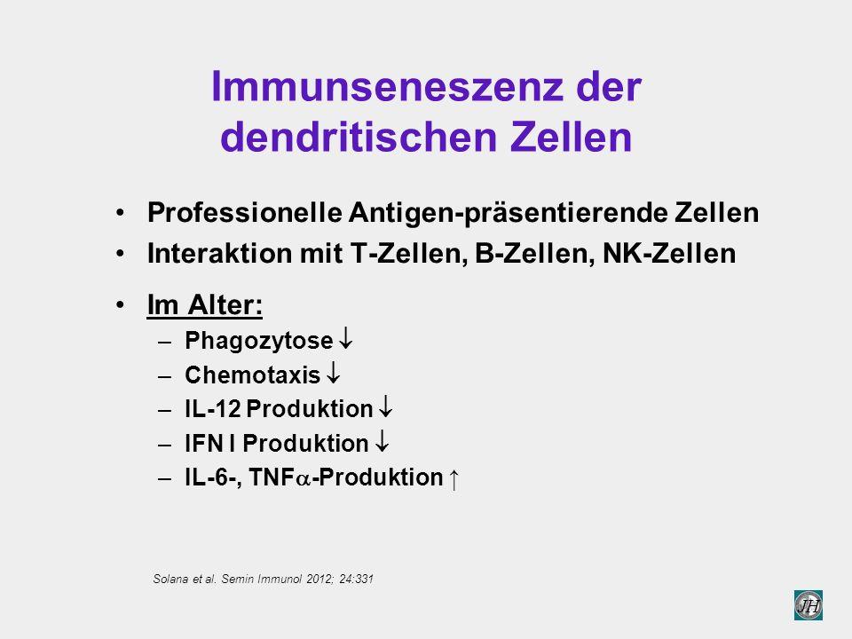 Immunseneszenz der dendritischen Zellen