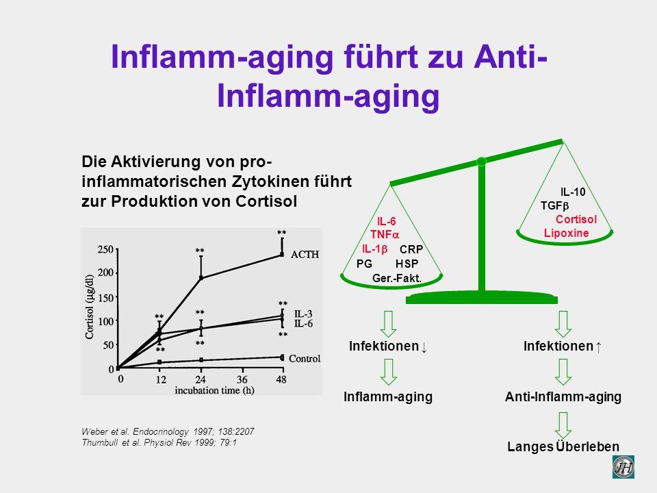 Inflamm-aging führt zu Anti-Inflamm-aging